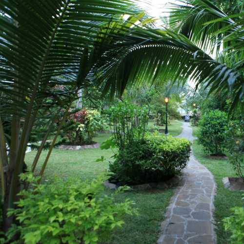 1500-px-garden.jpg
